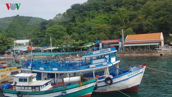 Verwaltungsstab gegen illegale Fischerei gegründet - ảnh 1