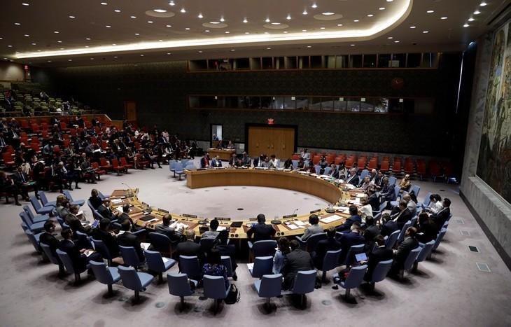 Internationale Medien schätzen Rolle Vietnams als nichtständiges Mitglied des UN-Sicherheitsrats - ảnh 1