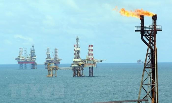 Für die Entwicklung der Erdöl-Branche soll das Ölgesetz geändert werden - ảnh 1