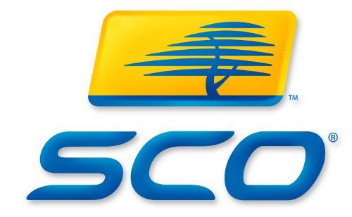 Para Menlu  SCO berkomitmen memperkuat kerjasama - ảnh 1
