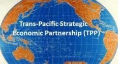 Jepang resmi berpartisipasi pada perundingan TPP - ảnh 1