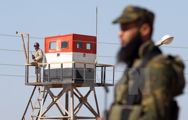 Palestina dan Suriah sepakat melakukan aksi militer bersama untuk menentang IS di kamp Yarmouk - ảnh 1