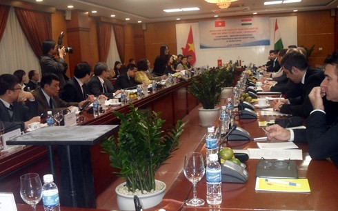 Vietnam dan Hungaria memperkuat hubungan ekonomi-perdagangan - ảnh 1