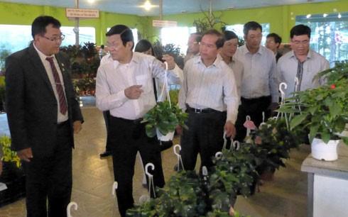 Presiden Vietnam, Truong Tan Sang mengapresiasi pola pertanian teknologi tinggi di provinsi Lam Dong - ảnh 1