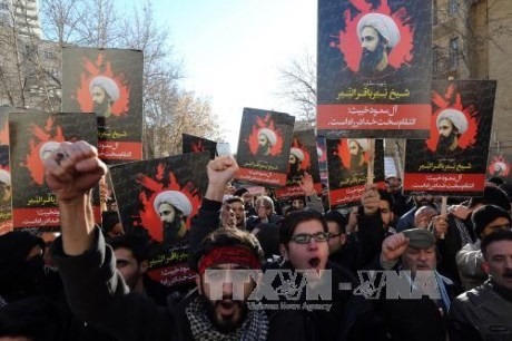 PBB mengutuk serangan terhadap Kedutaan Besar Arab Saudi di Iran - ảnh 1