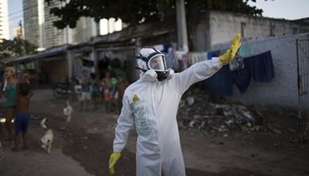 Vietnam belum mencatat pasien kejangkitan virus Zika - ảnh 1