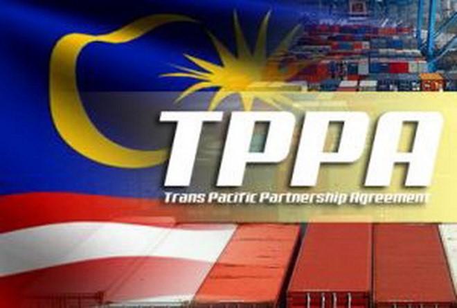 Majelis Tinggi Malaysia meratifikasi TPP - ảnh 1