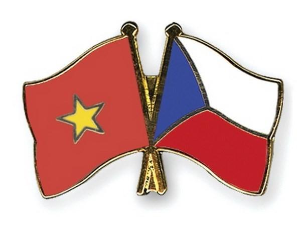 Deputi Menlu Republik Czech melakukan konsultasi politik di Vietnam - ảnh 1