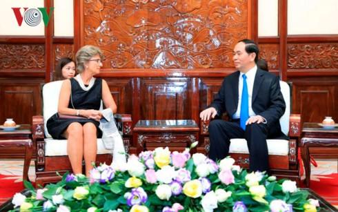 Presiden Vietnam Tran Dai Quang menerima Dubes berbagai negara di Vietnam - ảnh 1