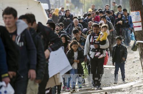 Masalah migran: Austria mengimbau kepada Uni Eropa dan Italia supaya cepat beraksi untuk mencegah krisis - ảnh 1