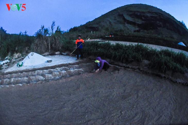 """""""Museum"""" geologi gunung berapi purba yang jarang ada di dunia di Pulau Ly Son - ảnh 8"""