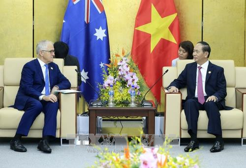 Presiden Vietnam, Tran Dai Quang menerima pemimpin perekonomian-perekonomian APEC - ảnh 1