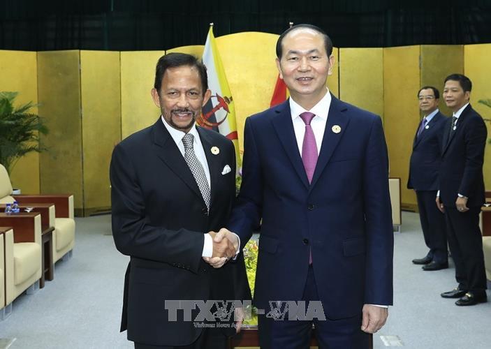 Presiden Vietnam, Tran Dai Quang menerima pemimpin perekonomian-perekonomian APEC - ảnh 3