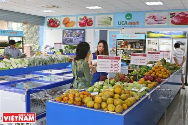 Memperhebat pemasaran hasil pertanian di pasar-pasar tradisional - ảnh 1