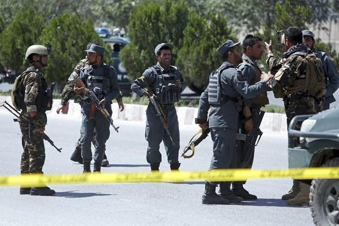 Pasukan keamanan Afghanistan membasmi 24 orang militan Taliban - ảnh 1
