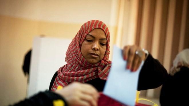 DK PBB mengesahkan rencana penyelenggaraan pemilu di Libia - ảnh 1