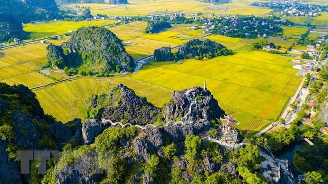"Banyak aktivitas yang bergelora pada Pekan Pariwisata Ninh  Binh ""Warna kuning Tam Coc – Trang An""  - ảnh 1"