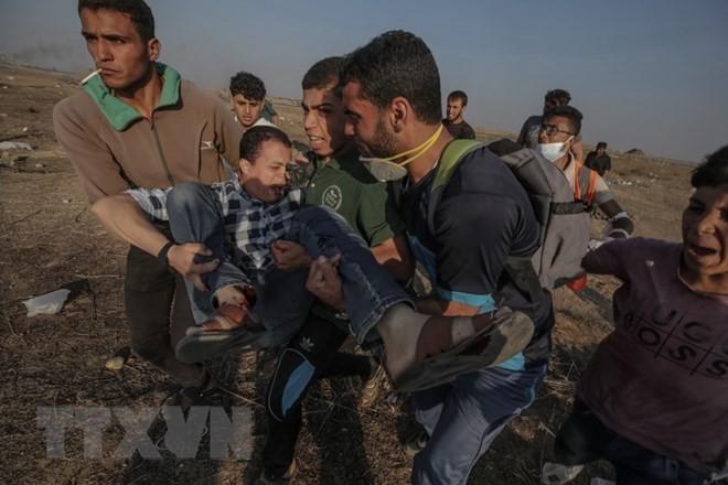 MU PBB mengesahkan resolusi yang mengutuk Israel menggunakan kekerasan terhadap orang Palestina - ảnh 1