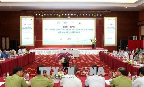 Viet Nam menyambut Hari Antipenggurunan Sedunia - ảnh 1