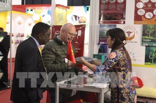 Viet Nam mencari peluang ekspor di Pekan Raya Perdagangan terbesar Afrika - ảnh 1