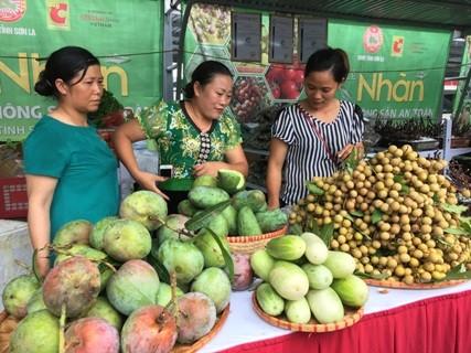 Pekan buah kelengkeng dan hasil pertanian yang aman Provinsi Son La di Kota Ha Noi - ảnh 1