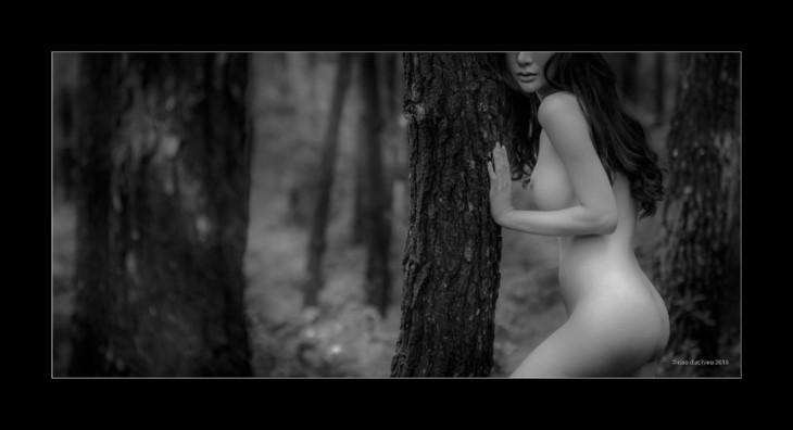 Memandangi karya-karya dalam pameran foto telanjang pertama yang mendapat surat izin di Viet Nam - ảnh 1