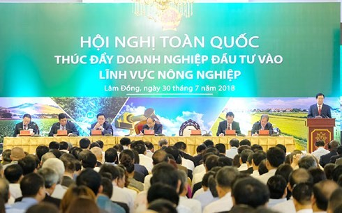 PM Nguyen Xuan Phuc: Berpadu tenaga membawa Viet Nam menggeliat ke posisi depan dunia dalam kelompok negara-negara utama di bidang pertanian   - ảnh 1