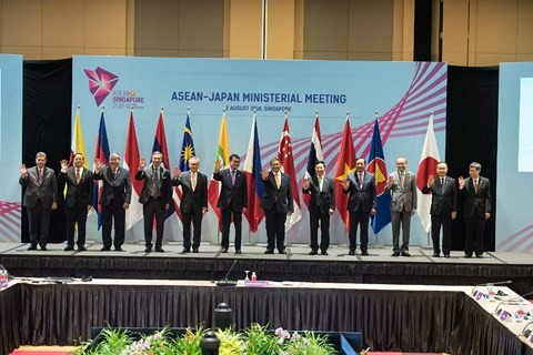 Mendorong mekanisme kerjasama ASEAN+3 pada tahap pasca pembentukan Komunitas - ảnh 1