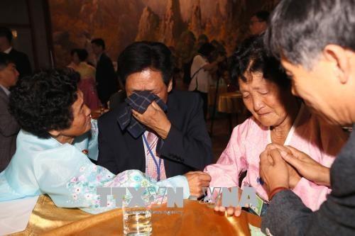 Kesan yang impressif dalam reuni keluarga antar-Korea - ảnh 1
