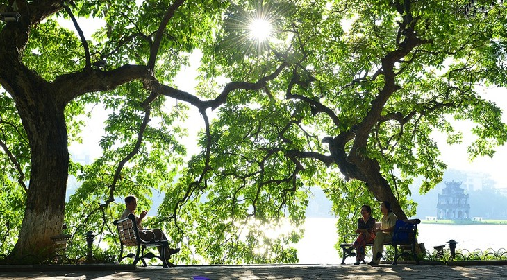 Warna musim gugur Kota Ha Noi - ảnh 1