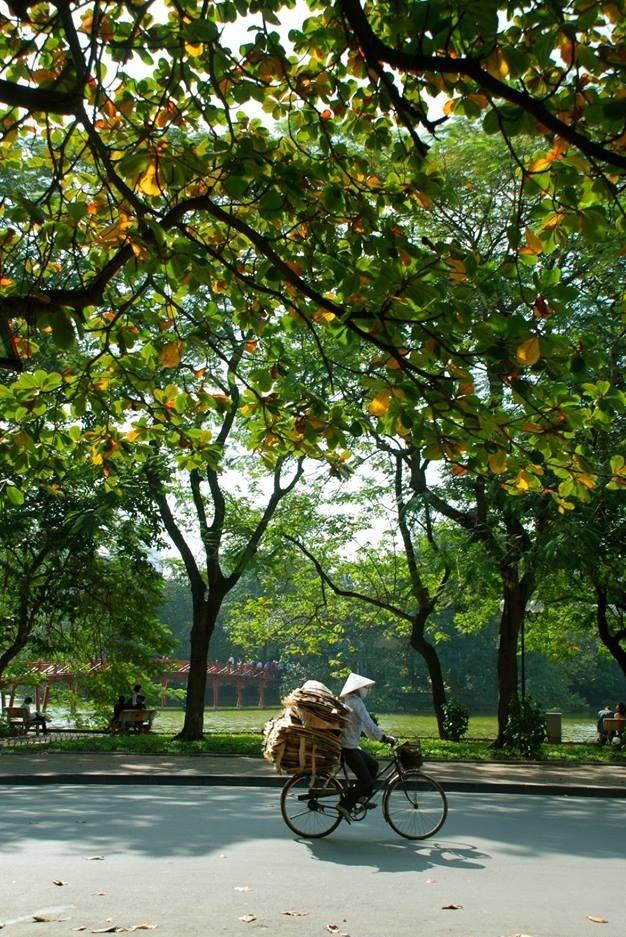 Warna musim gugur Kota Ha Noi - ảnh 2