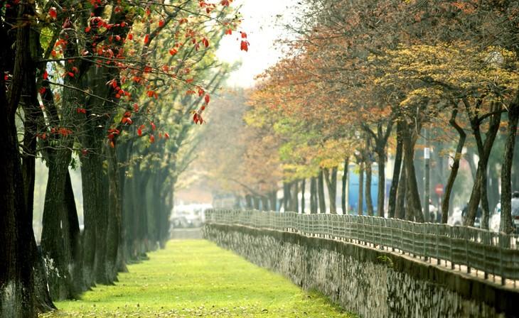 Warna musim gugur Kota Ha Noi - ảnh 3