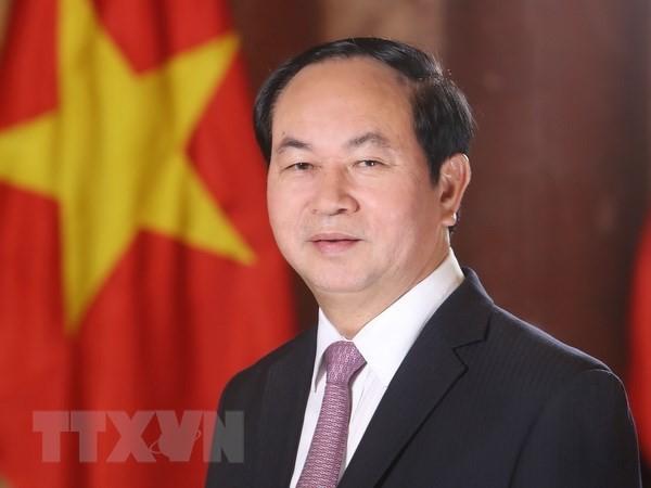 Presiden Viet Nam, Tran Dai Quang menjawab interviu pers Mesir - ảnh 1