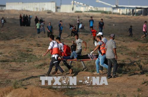 Lebih dari 180 orang Palestina mendapat luka-luka dalam baku tembak dengan para serdadu Israel di Jalur Gaza - ảnh 1