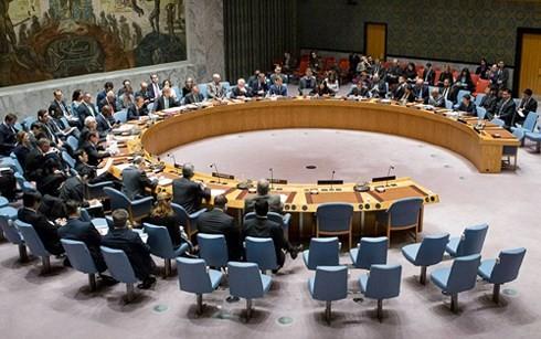 Rusia meminta kepada DK PBB supaya melakukan sidang tentang situasi Suriah - ảnh 1
