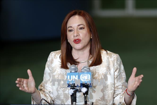 Pembukaan Persidangan MU PBB angkatan ke-73: Ketua baru menetapkan 7 prioritas aksi - ảnh 1