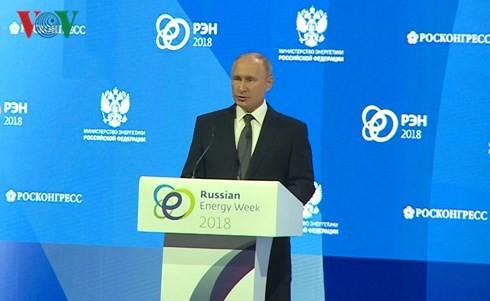 """Pekan energi Rusia 2018: """"Mengembangkan energi secara berkesinambungan dalam satu dunia yang sedang berubah"""" - ảnh 1"""