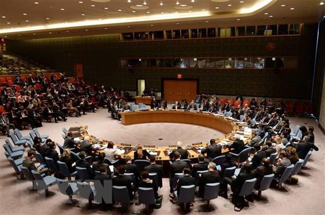 Jerman merekomendasikan kepada Perancis untuk menyerahkan kursi keanggotaan tetap di DK PBB kepada Eropa - ảnh 1