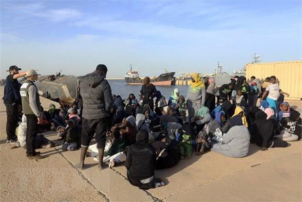 Italia menegaskan adanya terorisme di kapal-kapal pengangkut migran dari Libia - ảnh 1