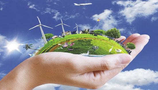 Aktivitas-aktivitas sehubungan dengan Hari Lingkungan Hidup Sedunia dan Hari Samudra Sedunia - ảnh 1