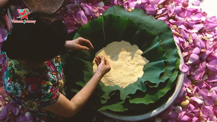 Mengunjungi Vietnam, memandangi warna bunga teratai di musim panas - ảnh 7