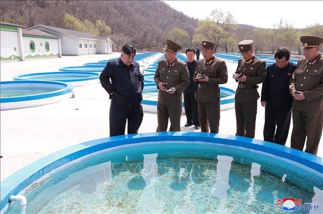 Republik Korea: RDRK lebih memprioritaskan penjaminan keamanan dari pada sanksi-sanksi - ảnh 1