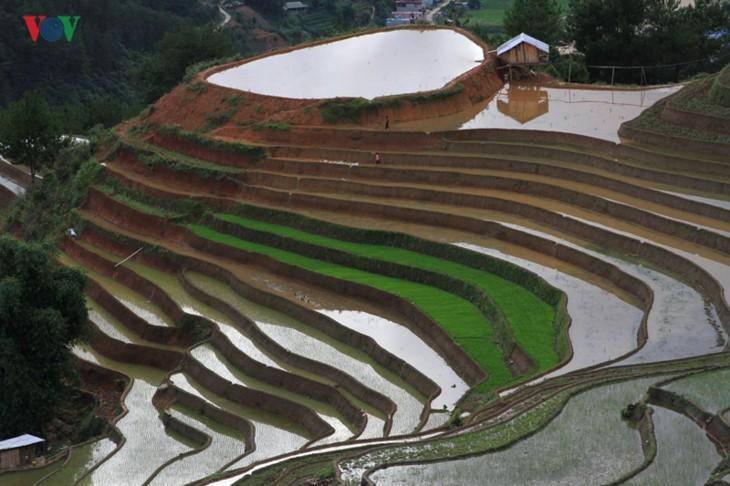 Mu Cang Chai – salah satu destinasi yang paling indah di dunia - ảnh 1