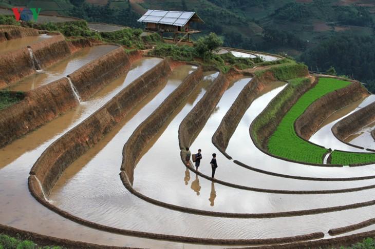 Mu Cang Chai – salah satu destinasi yang paling indah di dunia - ảnh 3
