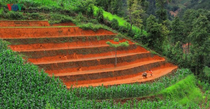 Mu Cang Chai – salah satu destinasi yang paling indah di dunia - ảnh 4