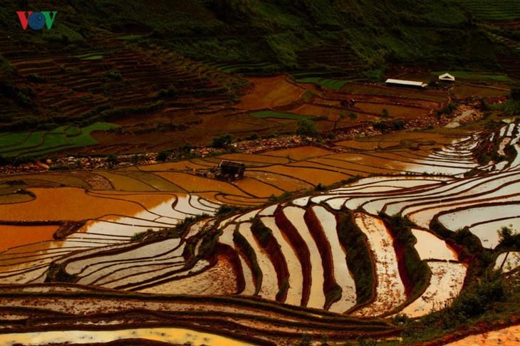 Mu Cang Chai – salah satu destinasi yang paling indah di dunia - ảnh 6