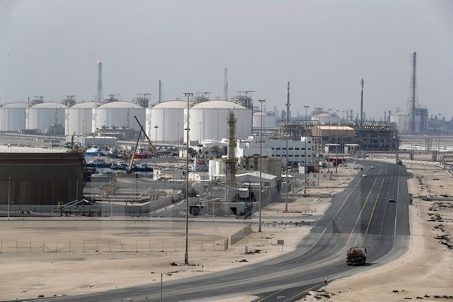 Qatar crisis harming all countries involved - ảnh 1