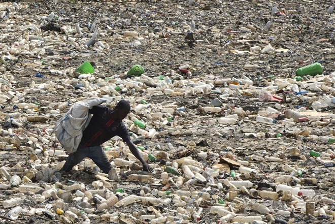 World Environment Day: UN calls for reducing use of plastic bags  - ảnh 1
