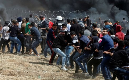 Gaza conflicts injure 240  - ảnh 1