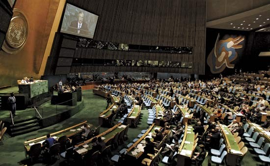 Интересы от Организации Объединённых Наций - ảnh 2